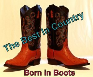 Western boots Best In Country